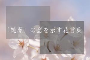 「純潔」の意を示す花言葉
