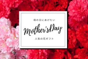 母の日にあげたい!人気の花ギフト